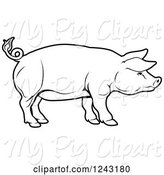 Swine Clipart of Black and White Pig in Profile by AtStockIllustration