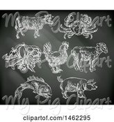 Swine Clipart of Black Board with Chalk Drawn Foods and Meat Animals by AtStockIllustration