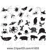 Swine Clipart of Black Bug and Animal Silhouettes on White by Prawny