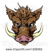 Swine Clipart of Brown Aggressive Boar Mascot Face by AtStockIllustration