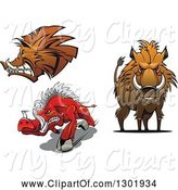 Swine Clipart of Cartoon Aggressive Boars by Vector Tradition SM