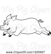Swine Clipart of Cartoon Black and White Outlined Running Pig by Lal Perera