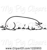 Swine Clipart of Cartoon Black and White Sow Resting Eating by Picsburg