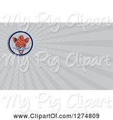 Swine Clipart of Cartoon Boar and Rays Business Card Design by Patrimonio