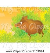 Swine Clipart of Cartoon Boar Emerging from Shrubs by Alex Bannykh