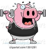 Swine Clipart of Cartoon Chubby Pink Pig Working out with Dumbbells by Cory Thoman