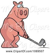 Swine Clipart of Cartoon Golfing Pig Holding the Club Against the Ball on the Tee by Cory Thoman