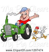 Swine Clipart of Cartoon Pig Farmer Waving and Driving a Tractor, with a Chicken Running by LaffToon