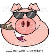 Swine Clipart of Cartoon Pig Head with a Cigar and Sunglasses by Hit Toon