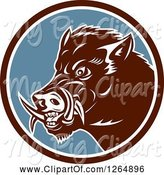 Swine Clipart of Cartoon Retro Wild Boar Pig in a Brown White and Blue Circle by Patrimonio