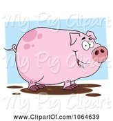 Swine Clipart of Cartoon Smiling Muddy Piggy by Hit Toon