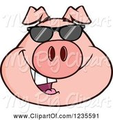 Swine Clipart of Cartoon Smiling Pig Head with Sunglasses by Hit Toon