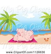 Swine Clipart of Cartoon Two Happy Pigs Cuddling on a Beach by Graphics RF