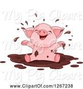 Swine Clipart of Cute Baby Piglet Playing in a Mud Puddle by Pushkin