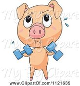 Swine Clipart of Cute Cartoon Piggy Lifting Weights by Graphics RF