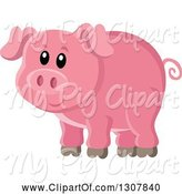 Swine Clipart of Cute Pink Piggy by Visekart