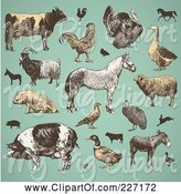 Swine Clipart of Digital Collage of Vintage Farm Animals and Livestock on Turquoise by Anja Kaiser