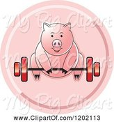 Swine Clipart of Fit Pig Exercising and Lifting a Barbell Icon by Lal Perera