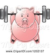 Swine Clipart of Fit Pig Exercising with a Heavy Barbell by Lal Perera