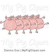 Swine Clipart of Five Chubby Pink Pigs Kicking Their Legs up While Dancing in a Chorus Line by Djart