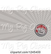 Swine Clipart of Gray Ray Razorback Boar Background or Business Card Design by Patrimonio