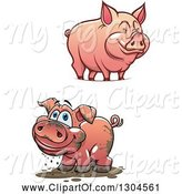 Swine Clipart of Happy Cartoon Muddy and Clean Pigs by Vector Tradition SM