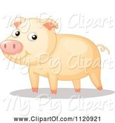 Swine Clipart of Happy Cartoon Pig by Graphics RF