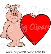 Swine Clipart of Happy Cartoon Pig Standing and Holding a Red Valentine Heart by LaffToon