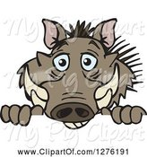 Swine Clipart of Happy Cartoon Warthog Peeking over a Sign by Dennis Holmes Designs