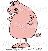Swine Clipart of Mad Cartoon Pig with Hands on His Hips by Djart