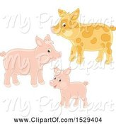 Swine Clipart of Pig Family by Alex Bannykh