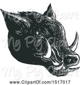 Swine Clipart of Razorback Boar Head, in Black and White Woodcut by Patrimonio