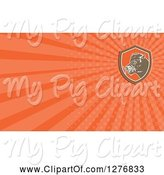Swine Clipart of Retro Boar and Orange Rays Business Card Design by Patrimonio