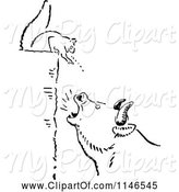 Swine Clipart of Retro Vintage Black and White Squrrel Annoying a Boar by Prawny Vintage