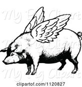 Swine Clipart of Retro Vintage Black and White Winged Pig by Prawny Vintage