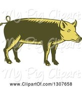 Swine Clipart of Retro Woodcut Green and Yellow Pig in Profile by Patrimonio