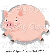 Swine Clipart of Round Pig by Graphics RF