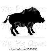 Swine Clipart of Silhouetted Boar, with a Reflection or Shadow, on a White Background by AtStockIllustration