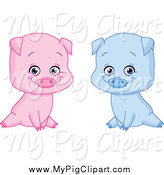Swine Clipart of Sitting Blue and Pink Boy and Girl Pigs by Yayayoyo