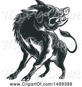 Swine Clipart of Sketched Angry Wild Boar by Patrimonio
