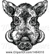 Swine Clipart of Sketched Black and White Boar by Vector Tradition SM