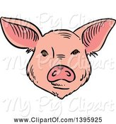 Swine Clipart of Sketched Pig Face by Vector Tradition SM