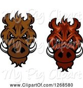 Swine Clipart of Vicious Razorback Boar Mascot Heads by Vector Tradition SM