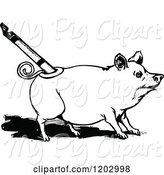 Swine Clipart of Vintage Black and White Oz Pig by Prawny Vintage