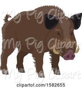 Swine Clipart of Wild Boar by Vector Tradition SM