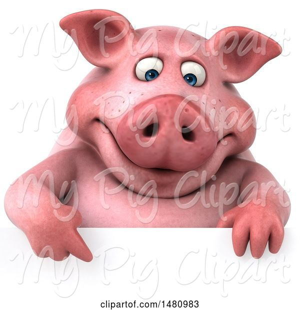 Swine Clipart of 3d Chubby Pig, on a White Background