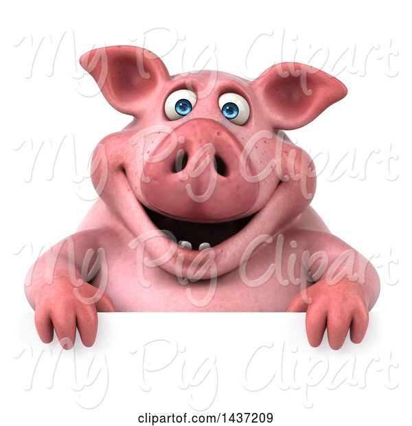 Swine Clipart of 3d Chubby Pig over a Sign, on a White Background