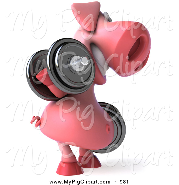 Swine Clipart of a 3d Pig Facing Right, Doing Bicep Curls and Working out with Dumbbells
