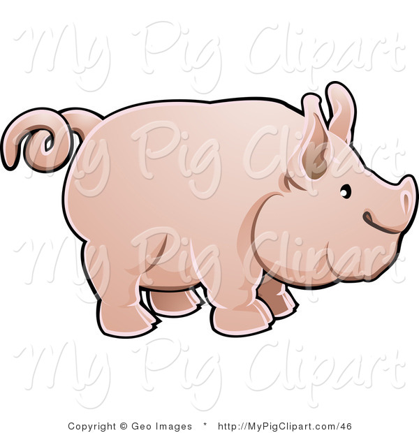 Swine Clipart of a Adorable Big Pink Pig with a Curling Tail in Profile
