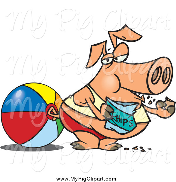 Swine Clipart of a Cartoon Fat Pig Eating Potato Chips on a Beach